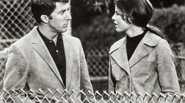 The Graduate 1967 Wallpaper Gallery