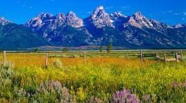 Wyoming Wallpaper Background