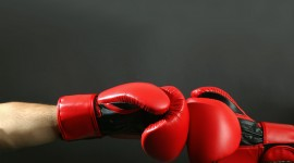 4K Boxing Glove Photo Free#3