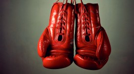 4K Boxing Glove Photo#2