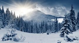 4K Winter Forest Wallpaper For PC