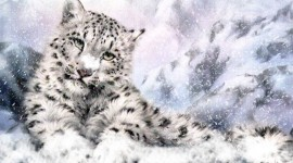 Animals In The Snow Image Download