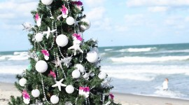Beach Holiday Wallpaper For IPhone Free