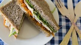 Green Sandwich Wallpaper Download Free