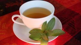 Herbal Tea Wallpaper Download Free