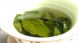 Herbal Tea Wallpaper For IPhone Free