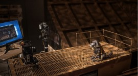 Isle Of Dogs 2018 Picture Download