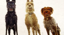 Isle Of Dogs 2018 Wallpaper For PC