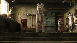 Isle Of Dogs 2018 Wallpaper Full HD