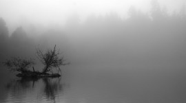 Mist Over Water Photo Free#1