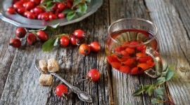 Rose Hip Tea Best Wallpaper