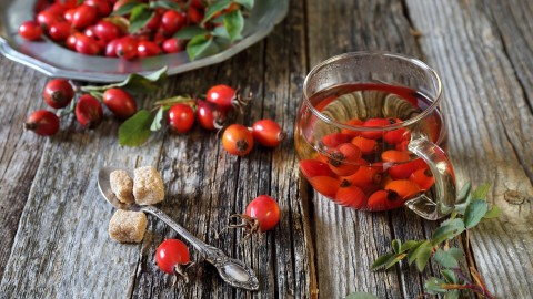 Rose Hip Tea wallpapers high quality