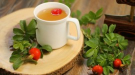Rose Hip Tea Photo Download