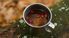 Rose Hip Tea Photo#1