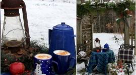 Winter Picnic Pics