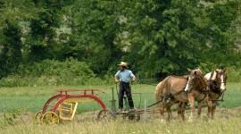 Amish Wallpaper Gallery