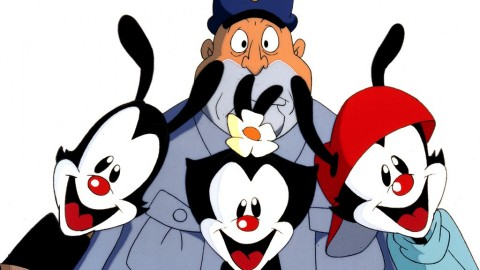 Animaniacs wallpapers high quality