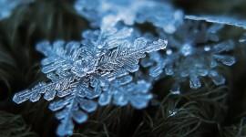 Beautiful Snowflakes Best Wallpaper