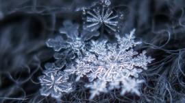 Beautiful Snowflakes Desktop Wallpaper For PC