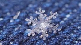Beautiful Snowflakes Desktop Wallpaper HD