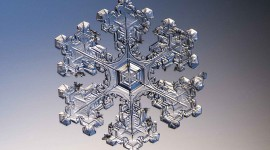 Beautiful Snowflakes Photo