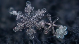 Beautiful Snowflakes Photo Download