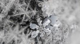 Beautiful Snowflakes Wallpaper 1080p
