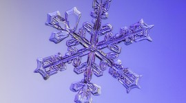 Beautiful Snowflakes Wallpaper For Android