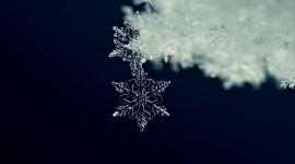 Beautiful Snowflakes Wallpaper For Desktop