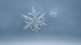 Beautiful Snowflakes Wallpaper Full HD