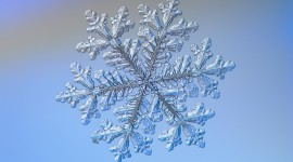 Beautiful Snowflakes Wallpaper HQ