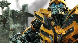 Bumblebee Wallpaper Full HD
