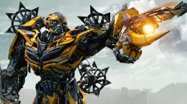 Bumblebee Wallpaper High Definition