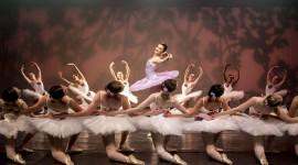 Dance Performance Wallpaper Gallery