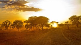 Dawn In Africa Wallpaper For Desktop