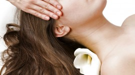 Hair Spa Wallpaper For IPhone Free
