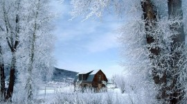 House In Winter Forest Aircraft Picture