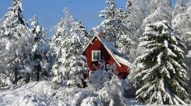 House In Winter Forest Desktop Wallpaper