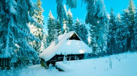 House In Winter Forest Image