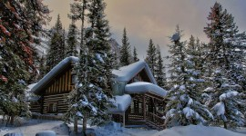 House In Winter Forest Image#1