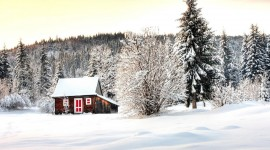 House In Winter Forest Photo