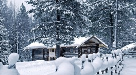 House In Winter Forest Photo Download