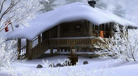 House In Winter Forest Photo#2