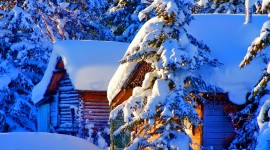 House In Winter Forest Wallpaper Download