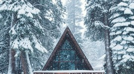 House In Winter Forest Wallpaper For Mobile