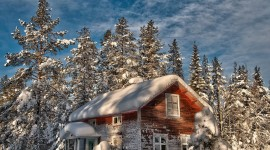 House In Winter Forest Wallpaper Free