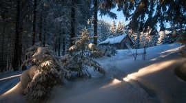 House In Winter Forest Wallpaper Gallery