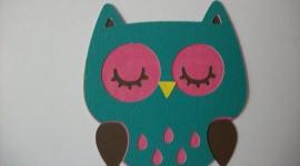 Owl Sleepy Desktop Wallpaper HD