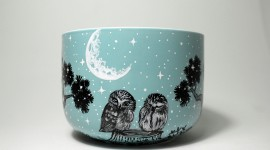 Owl Sleepy Wallpaper Full HD