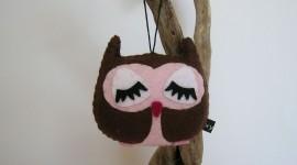 Owl Sleepy Wallpaper HQ